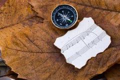 Zwart kompas als instrument en muzieknoten op droge bladeren Stock Foto's