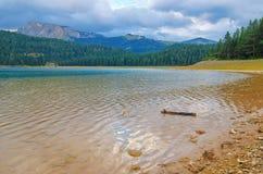 Zwart meer in nationaal park Durmitor in Montenegro, Europa Berg, bos en strand op blauwe bewolkte hemel een zonnige dag bij zons stock foto's