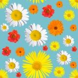 Zwart naadloos bloemenpatroon stock fotografie