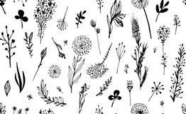 Zwart naadloos patroon met gras op een witte achtergrond Hygge, bohostijl Vector illustratie Ontwerpelement voor royalty-vrije stock foto's