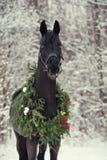 Zwart paard met Kerstmiskroon Royalty-vrije Stock Afbeeldingen