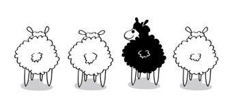 Zwart schapen Royalty-vrije Stock Afbeeldingen