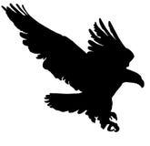 Zwart Silhouet die Gouden Eagle vliegen Stock Afbeeldingen