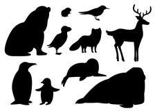 Zwart silhouet Reeks van noordpooldierenpictogram Vogels en zoogdieren Noordpooldier, beeldverhaal vlak ontwerp Vector Geïsoleerd royalty-vrije illustratie