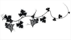 Zwart silhouet van druiven. Vectorillustratie. Stock Fotografie