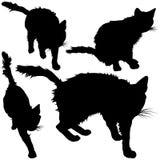 Zwart silhouet van kat Vector illustratie Royalty-vrije Stock Foto's