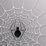 Zwart spinneweb Royalty-vrije Stock Foto