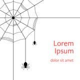 Zwart spinneweb met spinnen Royalty-vrije Stock Foto's