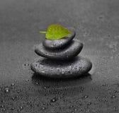 Zwart stenen en blad Stock Foto's