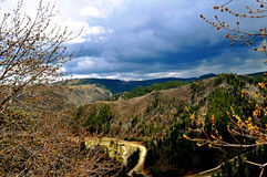 Zwart Van Zuid- heuvels Dakota Royalty-vrije Stock Foto