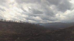 Zwart verkoold bomen en gras in de rook na de brand in de vallei de sombere wolkenachtergrond stock videobeelden