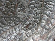 Zwart verkoold gebrand hout met glanzende geweven korrel in een gebogen patroon stock afbeelding