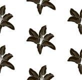 Zwart Vorm Naadloos Patroon met Getrokken Lelies Stock Foto