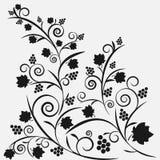 Zwart druivenpatroon Stock Afbeelding