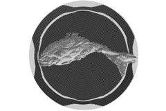 Zwart-wit abstract beeld stock illustratie