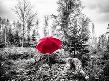 Zwart-wit beeld van een rode paraplu op een boomstam royalty-vrije stock afbeeldingen