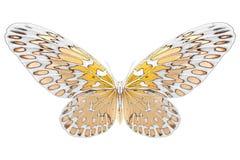 Zwart-wit beeld van mooie vlinder met kleurrijke vleugels Royalty-vrije Stock Foto