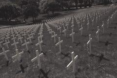 Zwart-wit beeld van witte kruisen op een gebied Royalty-vrije Stock Foto's