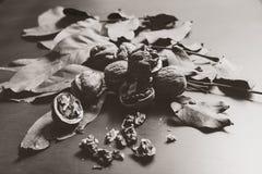 zwart-wit beeld Verscheidene okkernootpitten en liggen op houten achtergrond Stock Foto's