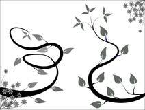Zwart-wit BloemenOntwerp Stock Afbeelding
