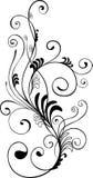 Zwart-wit bloemenornament Royalty-vrije Stock Foto's