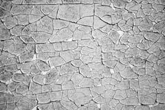 Zwart-wit de textuurachtergrond van de schilverf Royalty-vrije Stock Fotografie
