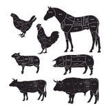 Zwart-wit diagramgids voor scherp vlees royalty-vrije illustratie