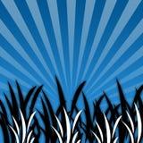 Zwart-wit Gras [05] Royalty-vrije Stock Foto's