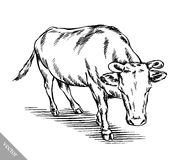 Zwart-wit graveer geïsoleerde koe Royalty-vrije Stock Fotografie
