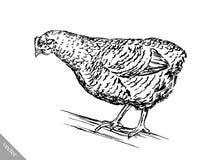Zwart-wit graveer kippenillustratie Stock Fotografie