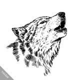 Zwart-wit graveer wolf Stock Fotografie