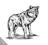 Zwart-wit graveer wolf Royalty-vrije Stock Foto
