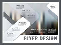 Zwart-wit het ontwerpmalplaatje van de Brochurelay-out jaarlijks Stock Fotografie