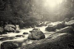 Zwart-wit landschap stock foto's
