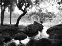 Zwart-wit landschap royalty-vrije stock afbeeldingen