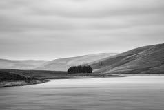 Zwart-wit landschap van meer met bomen op eiland Stock Fotografie