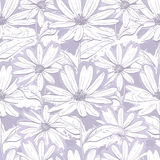 Zwart-wit lilac grijs bloemenbehang, Naadloze patroonkamilles, Hand-drawn madeliefjes Royalty-vrije Stock Afbeelding