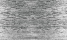 Zwart-wit muurhout Stock Fotografie