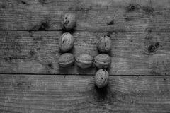 Zwart-wit Nummer 4 van okkernoten Stock Foto's