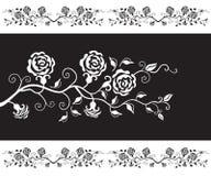 Zwart-wit ontwerp met rozen Stock Fotografie