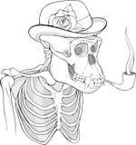 Zwart-wit skelet van gorilla rokende pijp Stock Afbeeldingen