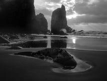 Zwart-wit strand met klippen Stock Afbeeldingen