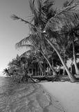 Zwart-wit strand in tropische bestemming stock afbeeldingen