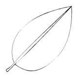 zwart-wit vage contour van blad met het pictogram van de takaard stock illustratie
