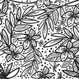 Zwart-wit vector vector naadloos mooi artistiek tropisch patroon met tropisch blad, de zwarte pret van het de zomerstrand, stock illustratie