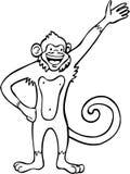 Zwart-witte aap - Stock Foto