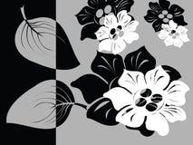 Zwart-witte bloemenkaart Royalty-vrije Stock Afbeeldingen
