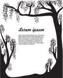Zwart-witte bomen. Royalty-vrije Stock Afbeeldingen