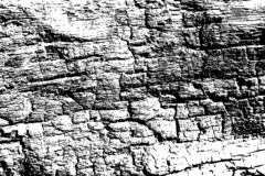 Zwart-witte brand gebrande houten textuur Houten oppervlakte gevonden achtergrond Doorstane natuurlijke textuur vector illustratie