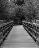 Zwart-witte Brug Stock Fotografie